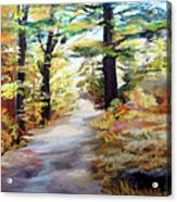 Autumn Walk In The Woods Acrylic Print by Trudy Morris