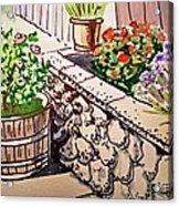 Backyard Sketchbook Project Down My Street Acrylic Print by Irina Sztukowski