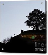 Bagend Dusk Acrylic Print by Linde Townsend