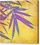Bamboo Batik II Acrylic Print by Judi Bagwell