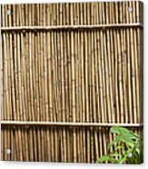 Bamboo Fence Acrylic Print by Don Mason