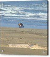 Bandon Oregon Beach Comber Prints Ocean Coastal Acrylic Print by Baslee Troutman