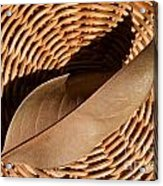 Basket Of Brown Acrylic Print by Dan Holm