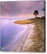 Beach Along Saint Josephs Bay Florida Acrylic Print by Tim Fitzharris