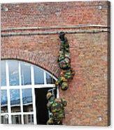 Belgian Paratroopers Rappelling Acrylic Print by Luc De Jaeger