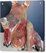 Big Eared Dog Acrylic Print by Roger Leighton