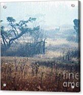Big Meadows In Winter Acrylic Print by Thomas R Fletcher