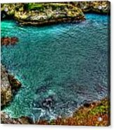 Big Sur Acrylic Print by Craig Incardone