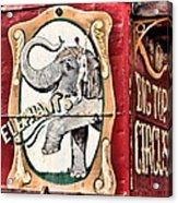 Big Top Elephants Acrylic Print by Kristin Elmquist