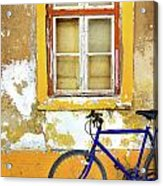 Bike Window Acrylic Print by Carlos Caetano