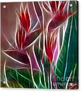 Bird Of Paradise Fractal Panel 2 Acrylic Print by Peter Piatt