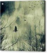Birds In Flight Against A Dark Sky Acrylic Print by Sandra Cunningham