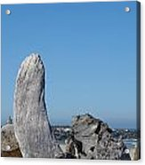 Blue Sky Coastal Landscape Driftwood Rock Pier Acrylic Print by Baslee Troutman