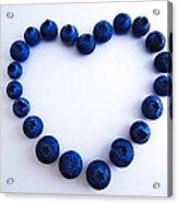 Blueberry Heart Acrylic Print by Julia Wilcox