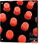 Bottles Red Caps Acrylic Print by Sami Sarkis