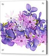Bouquet Of Spring Flowers Acrylic Print by Elena Elisseeva