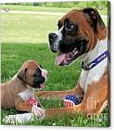 Boxer Mommy And Pup Acrylic Print by Renae Laughner