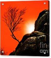 Brimham Sunset Acrylic Print by Meirion Matthias