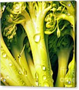 Broccoli Scape I Acrylic Print by Nancy Mueller