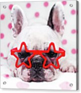 Bulldog With Star Glasses Acrylic Print by Retales Botijero