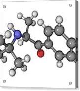 Bupropion Antidepressant Drug Molecule Acrylic Print by Laguna Design