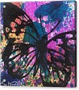 Butterfly Bliss Acrylic Print by Oddball Art Co by Lizzy Love