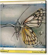 Butterflycomp 1991 B Acrylic Print by Glenn Bautista