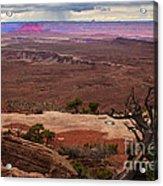 Canyonland Overlook Acrylic Print by Robert Bales