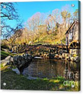 Cape Cod Grist Mill Acrylic Print by Catherine Reusch  Daley
