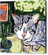 Cat And Mouse Friends Acrylic Print by Patricia Lazar