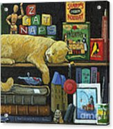 Cat Naps - Old Books Oil Painting Acrylic Print by Linda Apple
