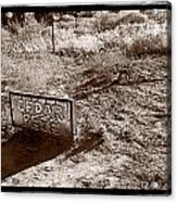 Cedar Pete Gravesite In Grafton Utah Acrylic Print by Steve Gadomski