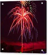 Celebrating America Acrylic Print by David Hahn