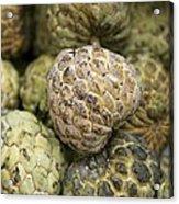 Cherimoya Fruit (annona Cherimola) Acrylic Print by Bjorn Svensson