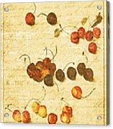 Cherries Acrylic Print by Bonnie Bruno