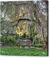 Cherry Blossoms At The Washington National Cathedral Acrylic Print by Metro DC Photography