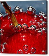Cherry Bubbles Under Water Acrylic Print by Tracie Kaska