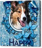 Christmas - Blue Snowflakes Sheltie Acrylic Print by Renae Laughner