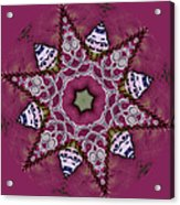 Christmas Star Acrylic Print by Bonnie Bruno