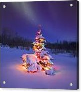 Christmas Tree Glowing Under The Acrylic Print by Carson Ganci