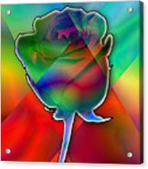 Chromatic Rose Acrylic Print by Anthony Caruso