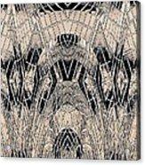 Chrome Acrylic Print by Tim Allen