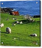 Co Cork, Beara Peninsula Acrylic Print by The Irish Image Collection
