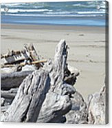 Coastal Driftwood Art Prints Blue Waves Ocean Acrylic Print by Baslee Troutman