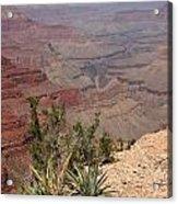 Colorado River Grand Canyon National Park Arizona Usa Acrylic Print by Audrey Campion