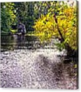 Concord River At Old North Bridge II Acrylic Print by Nigel Fletcher-Jones
