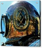 Copper Head Acrylic Print by Rene Triay Photography