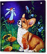 Corgi Magic - Pembroke Welsh Corgi Acrylic Print by Lyn Cook