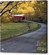Country Lane - D007732 Acrylic Print by Daniel Dempster