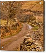 Country Lane Yorkshire Dales Acrylic Print by Trevor Kersley